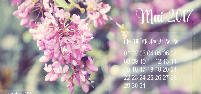 …alles neu… macht der Mai