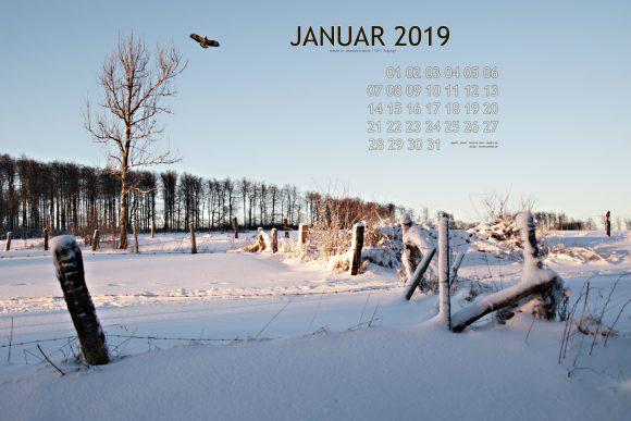 Kalenderblatt Januar 2019